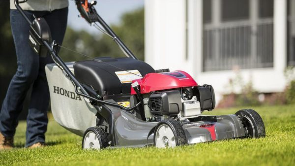 Best Gas Push Lawn Mower 2020