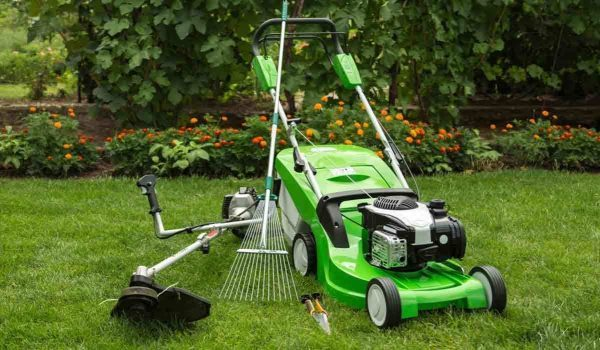 Best Self Propelled Gas Lawn Mower 2021